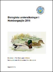 hornborgadok2015
