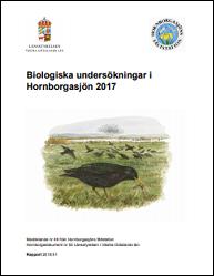 hornborgadok2017b
